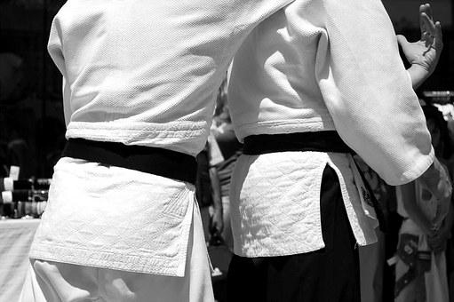 martial-arts-116542__340